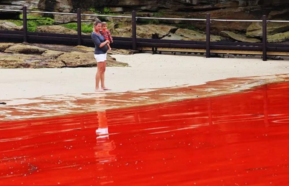 Vedet muuttuvat vereksi