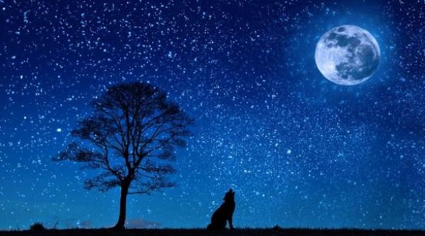 Missä on Kuu?